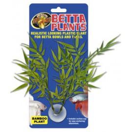 Betta Plant Bamboo