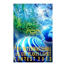 ADA Contest Book 2013