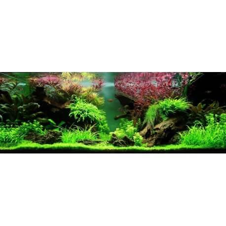 Aquariums ada ada couvercle pour cube garden 60 h pour for Couvercle pour aquarium