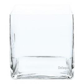 Do Aqua Plant Glass Cube 15
