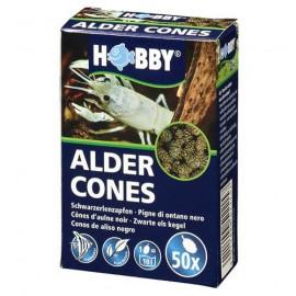 Hobby Cônes d'Aulnes