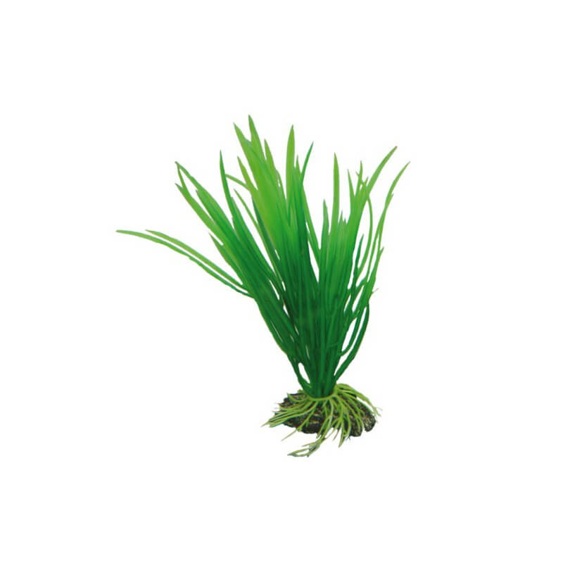 Hobby plante artificielle cyperus 16cm aquaplante for Plante artificielle