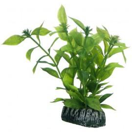 Plante artificielle Hygrophila 13cm