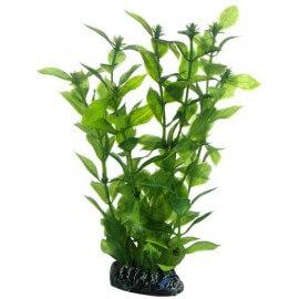 Plante artificielle Hygrophila 20cm