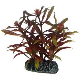 Plante artificielle Nesaea 7cm