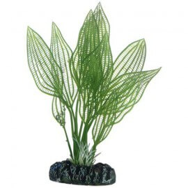 Plante artificielle Aponogeton 16cm
