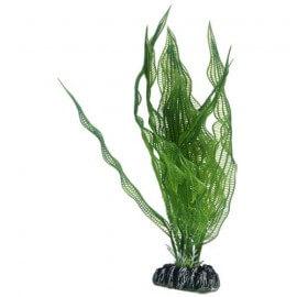 Plante artificielle Aponogeton 25cm