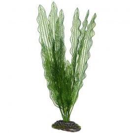 Plante artificielle Aponogeton 39cm