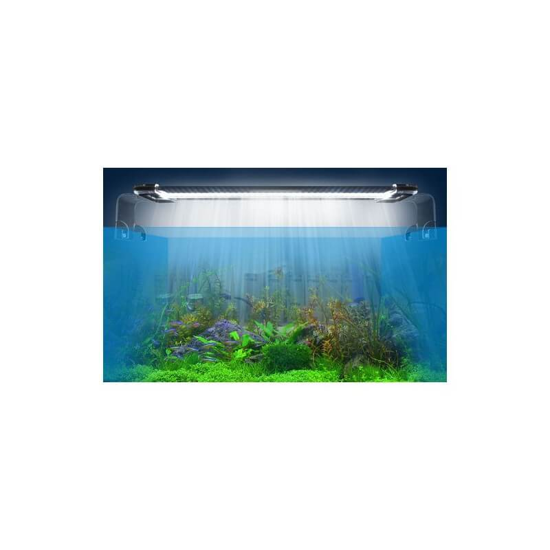 rampe led aquascaping 30cm programmable aquaplante. Black Bedroom Furniture Sets. Home Design Ideas