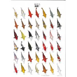 Poster Koïs N°2 A4