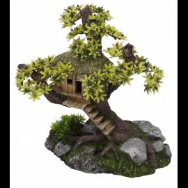 Aqua D'ella Tree House