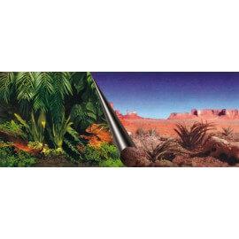 Poster Jungle + Desert