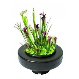 Panier flottant pour plantes