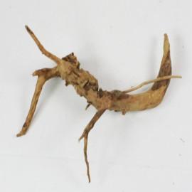 Racine Spider M SPA207