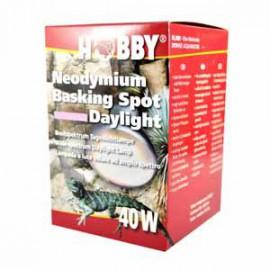 Hobby - Neodymium Basking Spot Daylight - 40 watt