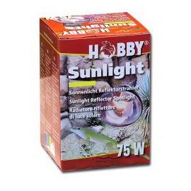 Hobby - Sunlight - 75 watt