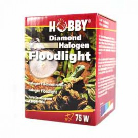Hobby - Diamond Halogen Floodlight - 75 watt