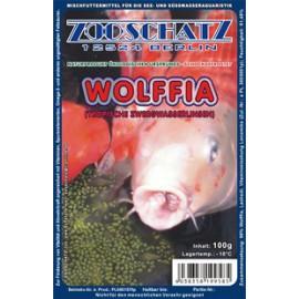 Nourriture Spéciale Koï et poissons d'eau froide Blister 100gr