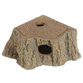 Grotte d'angle Stump