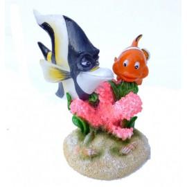 Aqua Della Clown Fish 3