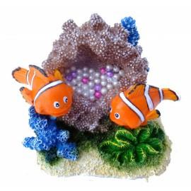 Aqua Della Clown Fish 8