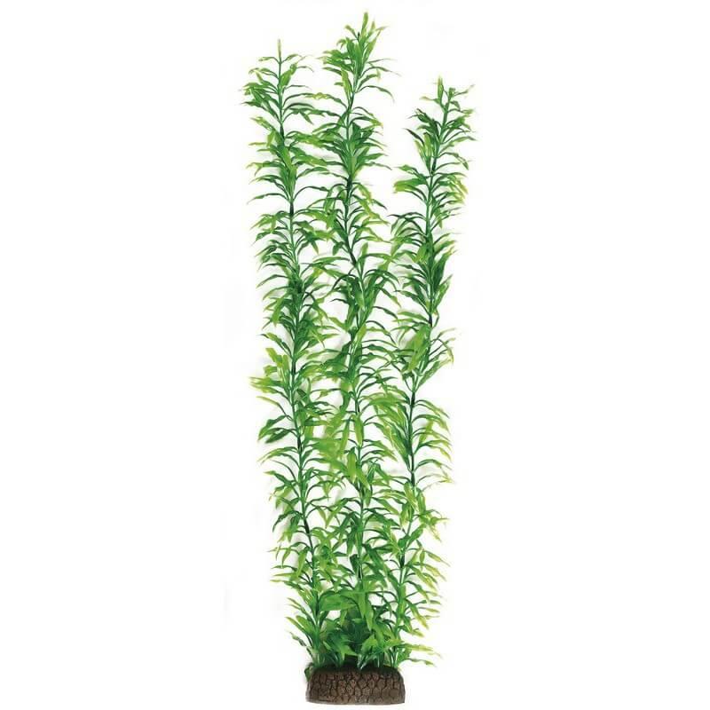 Sf plante artificielle heteranthera xxl 60cm aquaplante for Plante 60 cm