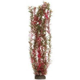 Plante artificielle Rotala XXL 60cm