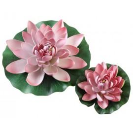 hobby Nénuphar rose 20 cm