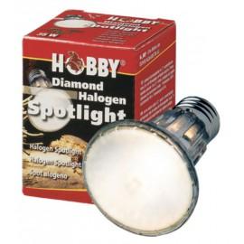 Halogen Spotlight 50 W
