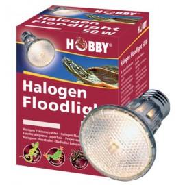 Halogen Floodlight 50 W