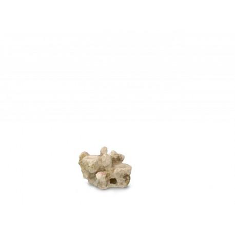 AQUA DELLA CORAL-REEF-XS ca.15x10x10cm, for 2 corals