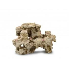 AQUA DELLA CORAL-REEF-L- ca.40x21x28cm, for 10 corals