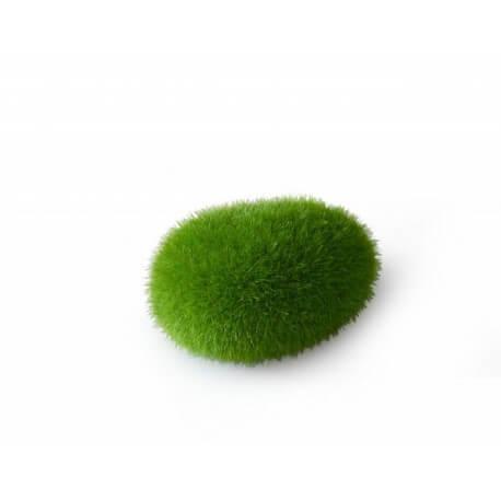AQUA DELLA MOSS BALL-SMALL- ca.6x4,5x3,5cm