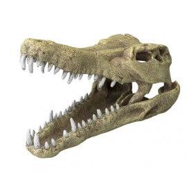 AQUA DELLA CROCODILE HEAD -L- ca.32,5x17x20,5cm