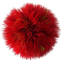AQUA DELLA PLANT BALL RED ca.11x11x11cm plastic