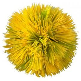AQUA DELLA PLANT BALL YELLOW ca.11x11x11cm plastic