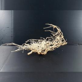 White Bonsai Tree Roots WB026