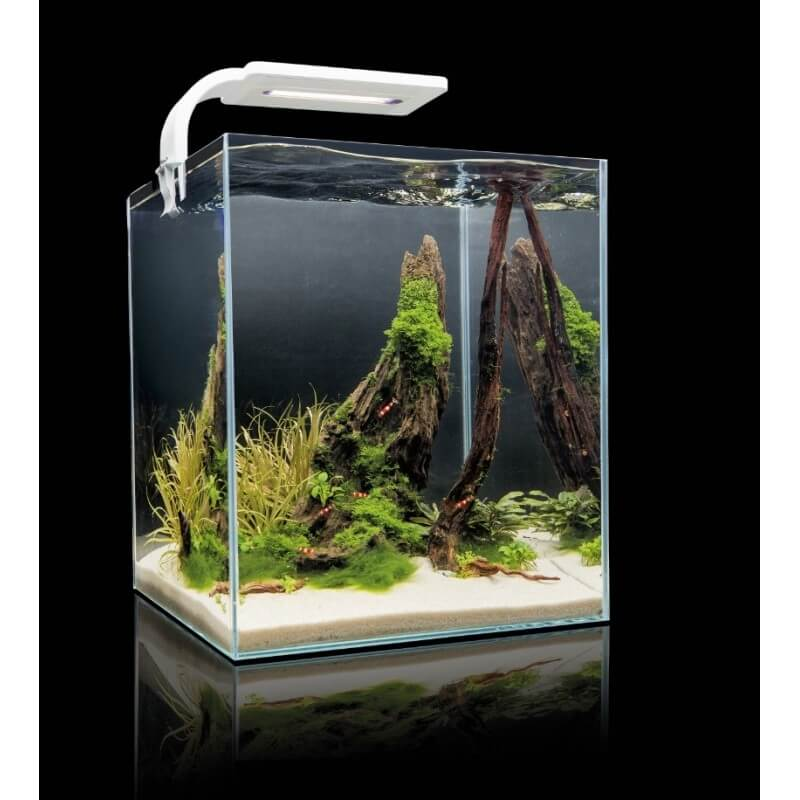 aquarium nano aquariums aquarium shrimpset smart 30 noir 30l. Black Bedroom Furniture Sets. Home Design Ideas