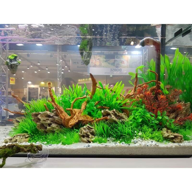 hobby plante artificielle ludwigia 34cm aquaplante
