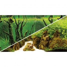Poster 120X50 Canyon / Woodland