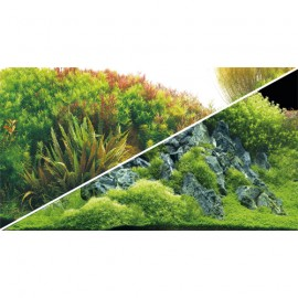 Hobby Poster Planted River / Green Rocks 100X50cm