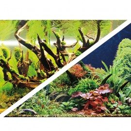 Hobby Poster Green Secret / Wood Island 120X50cm