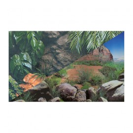 Hobby Poster Regenwald / Red Canyon Hauteur 40cm x25m