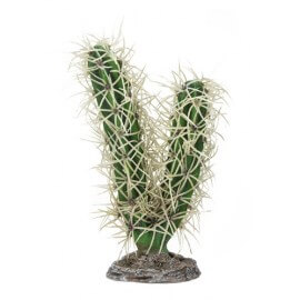Hobby Cactus Simpson 9x6x16cm