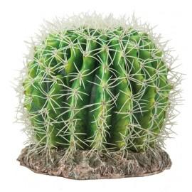 Hobby Cactus Sonora M 18x18x23cm