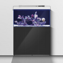 Aquarium Systems L'Aquarium 570 Noir