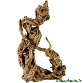 Racine Scaper Root 3
