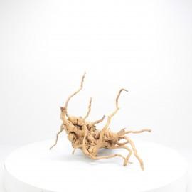 Racine Spider - SPE038