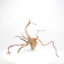 Racine Spider - SPE039