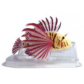 superfish FLUO TETE DE LION ORANGE